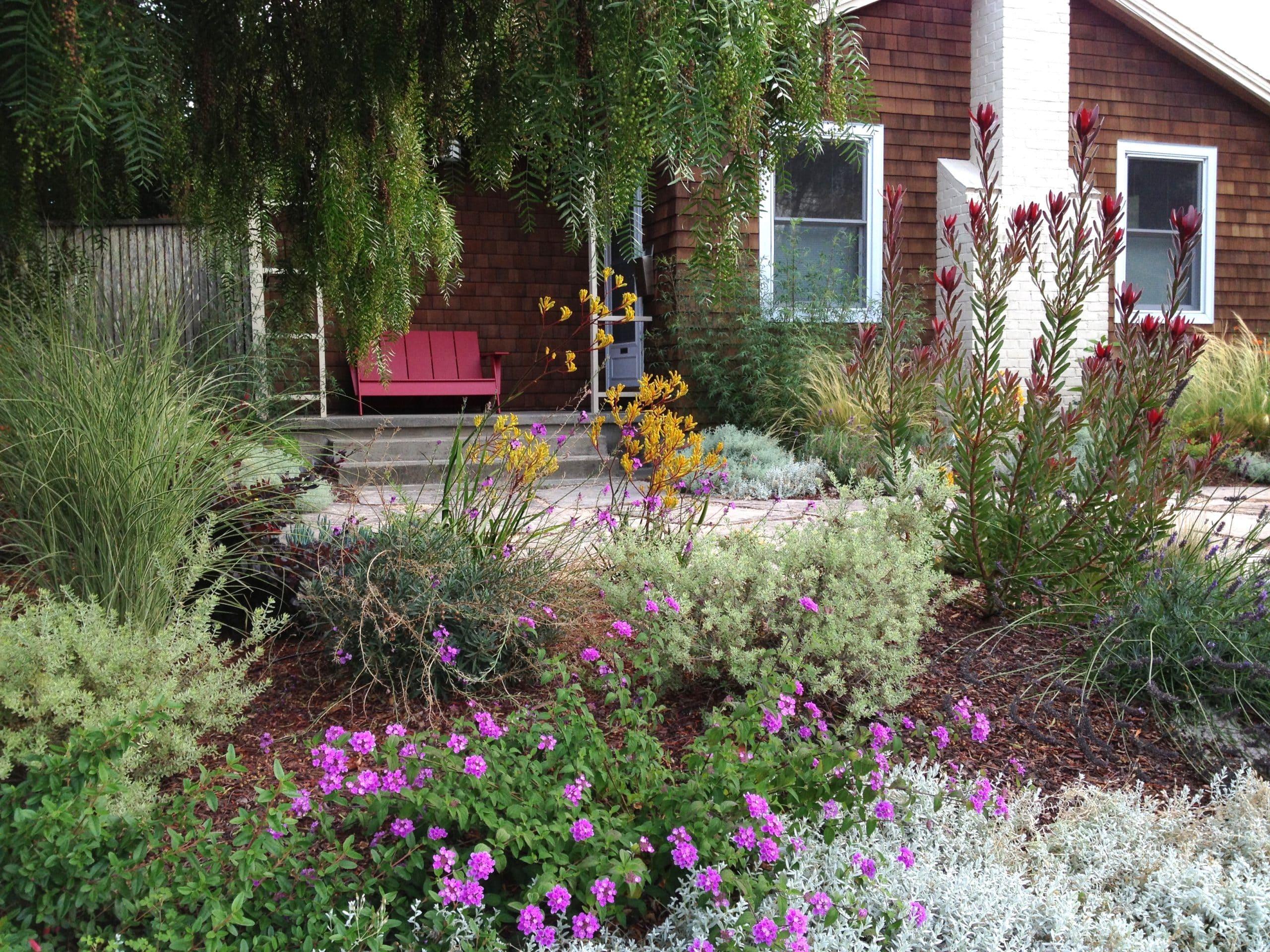 Garden design department sloat garden center for Garden design mill valley