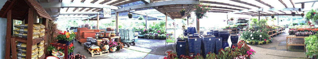 miller avenue sloat garden center