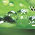 waterwise slider_Page_1