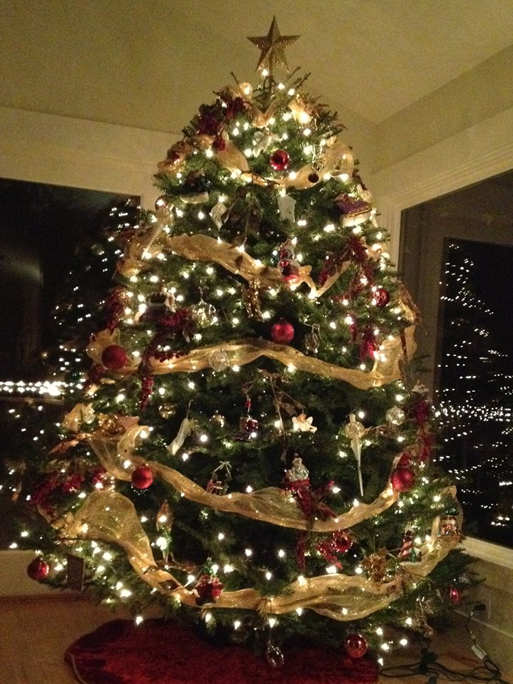 Christmas tree and wreath care tips sloat garden center - Tips to care for a natural christmas tree ...