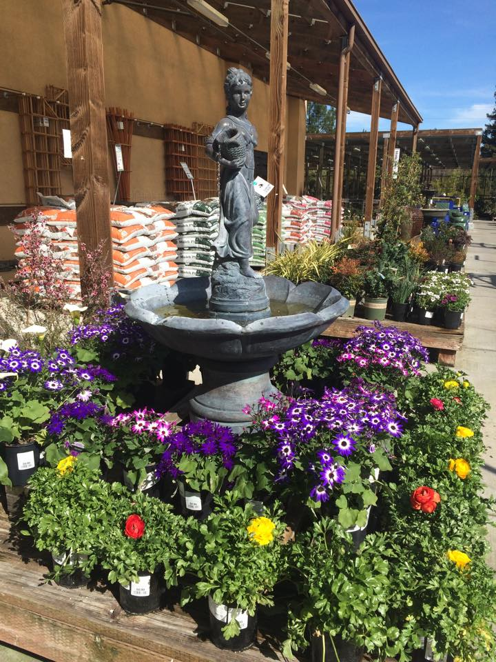 Danville Camino Sloat Garden Center