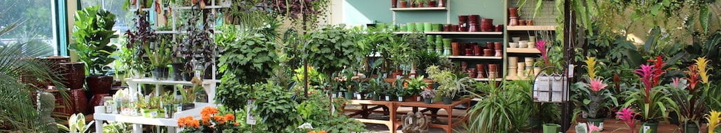 Concord Sloat Garden Center - Sloat Garden Center
