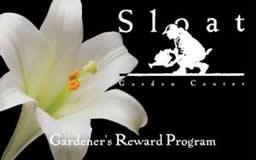 rewardcard4001c98