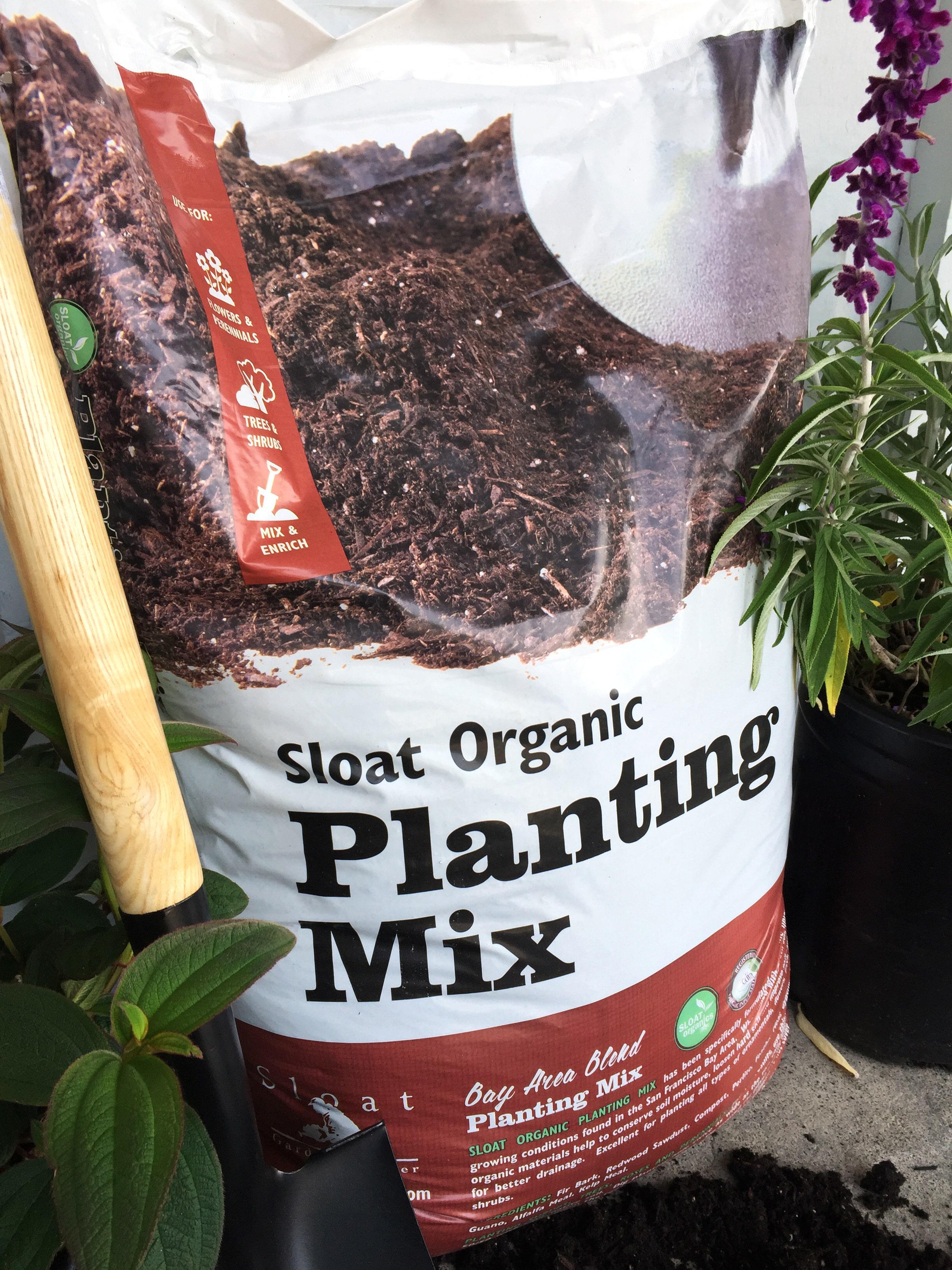Healthy gardens start with healthy soil - Sloat Garden Center