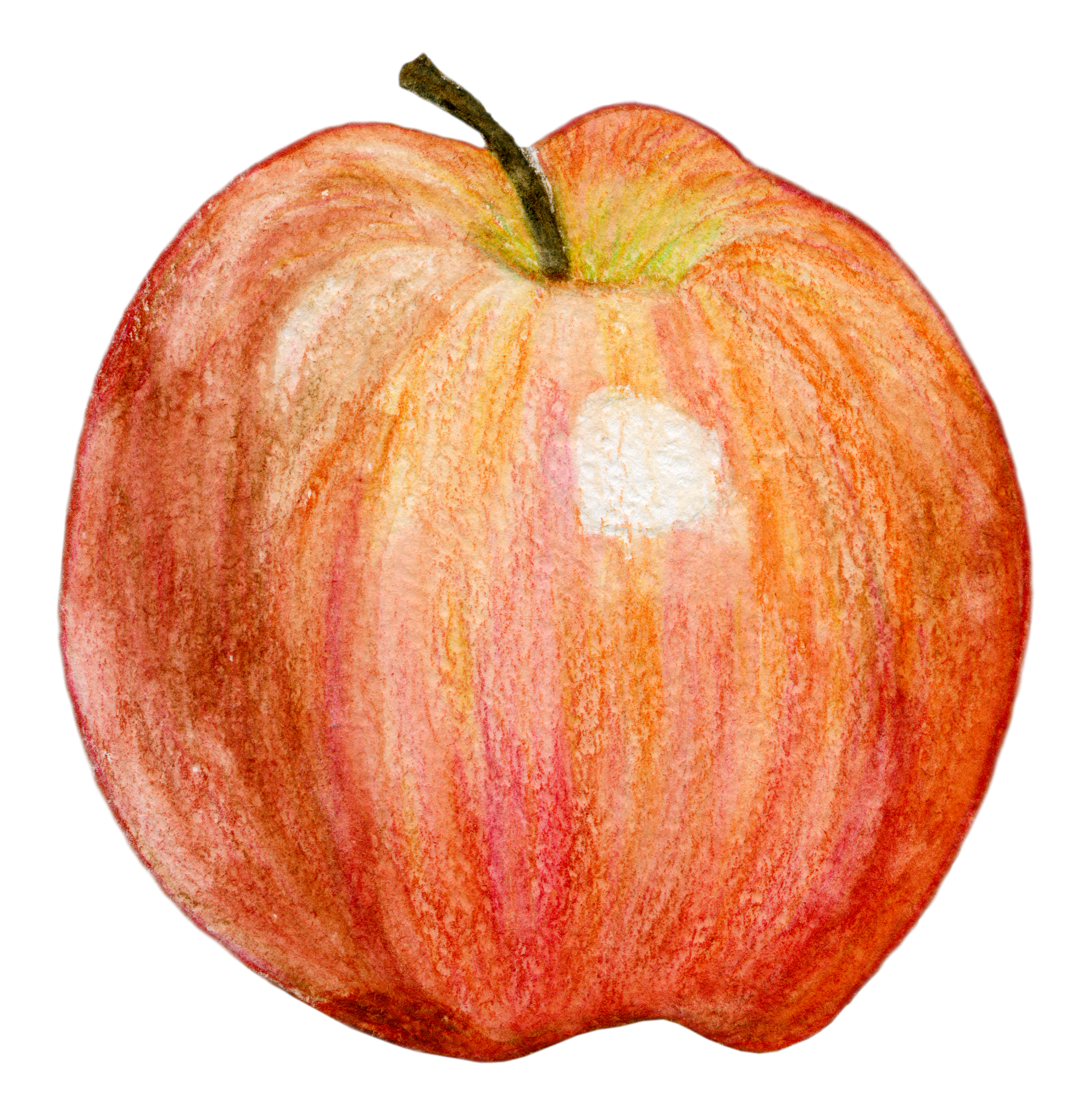 isolated graphic apple