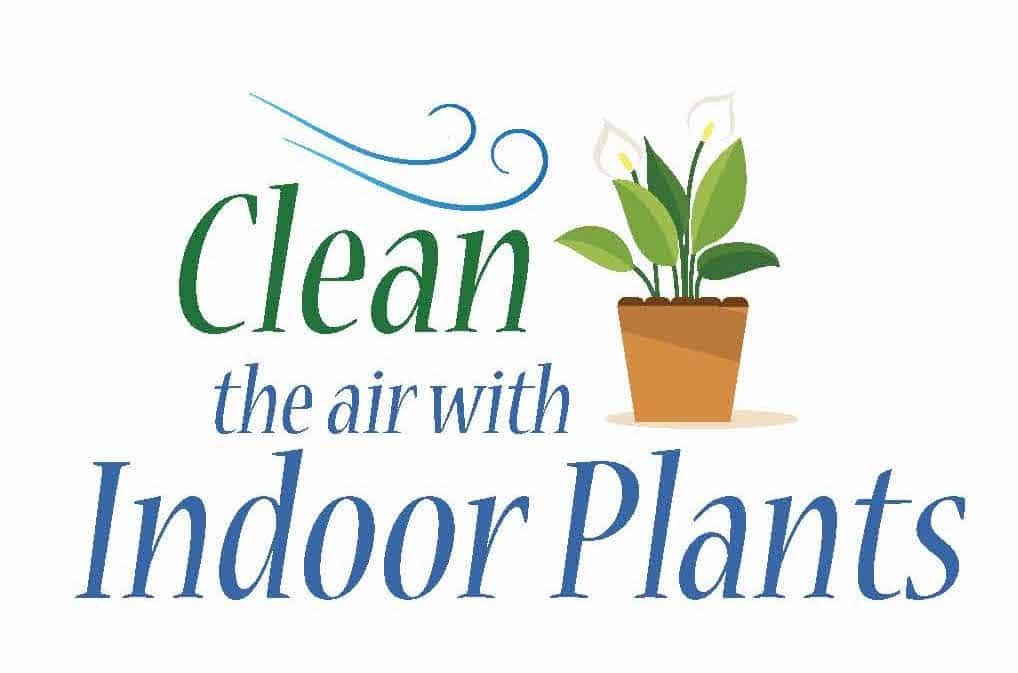 clean-the-air-logo