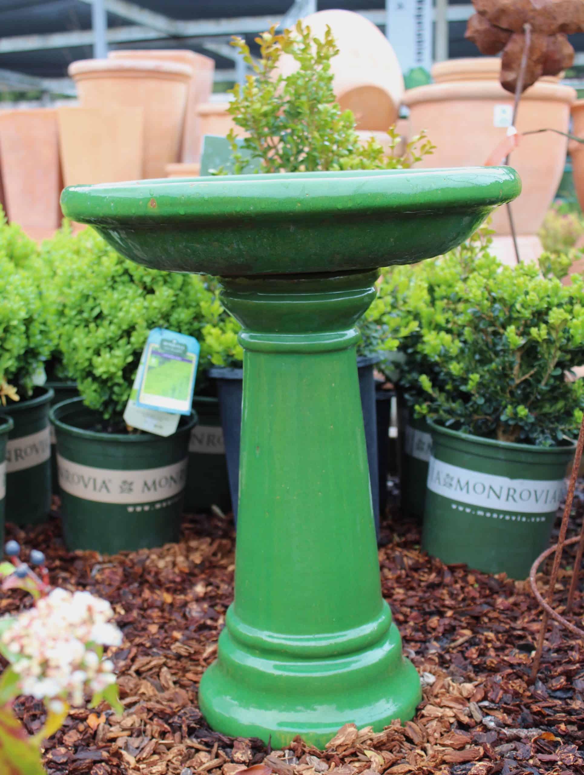 Birdbath Spring Green ... & Pottery - Sloat Garden Center