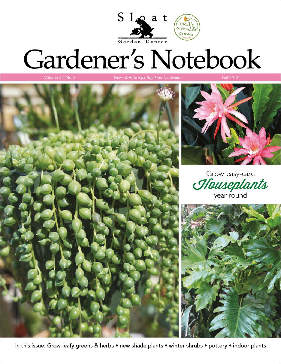 Fall Notebook - Sloat Garden Center